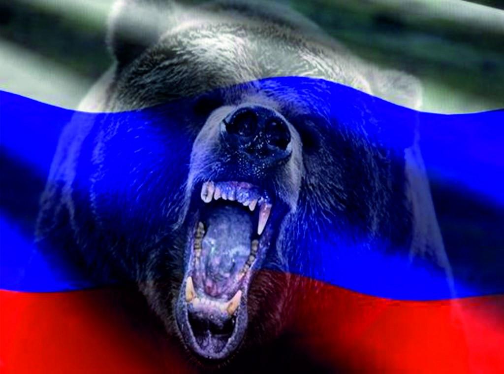 баннер русского медведя фото этом рейтинге