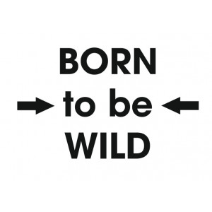 Наклейка на авто Born to be Wild